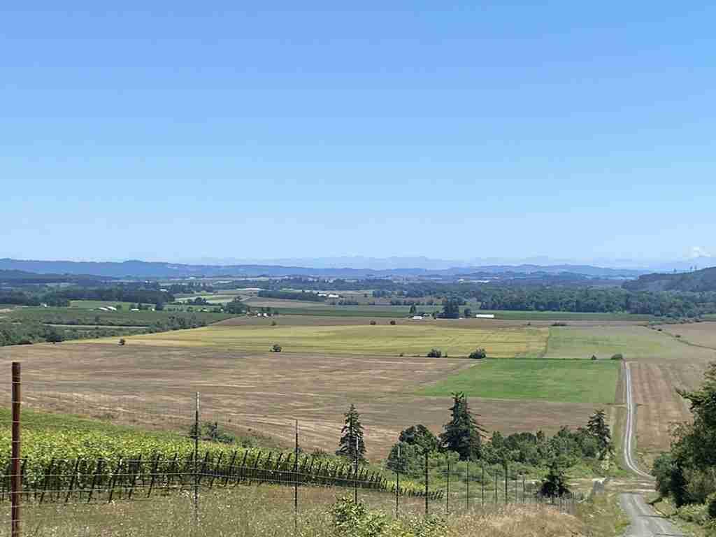 View towards the Cascade Mountain Range